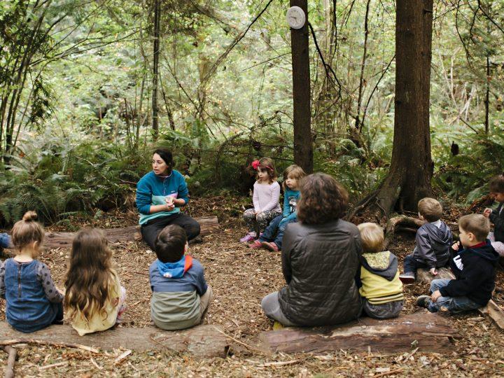 """U najsretnijoj zemlji na svijetu djeca u vrtiće idu u šumu: """"Odgoj treba biti ležeran i bez straha, pogledajte djecu, sretna su"""""""