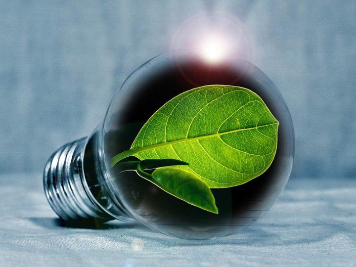 Nova INTERREG inicijativa za postizanje ugljične neutralnosti