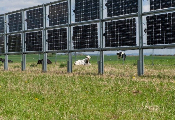 Solarni paneli se sve više koriste u modernoj poljoprivredi