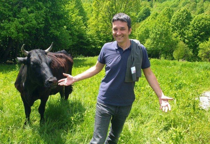 Uzgoj japanskih goveda početak je investicije koja u srcu Hrvatske stvara malu Švicarsku