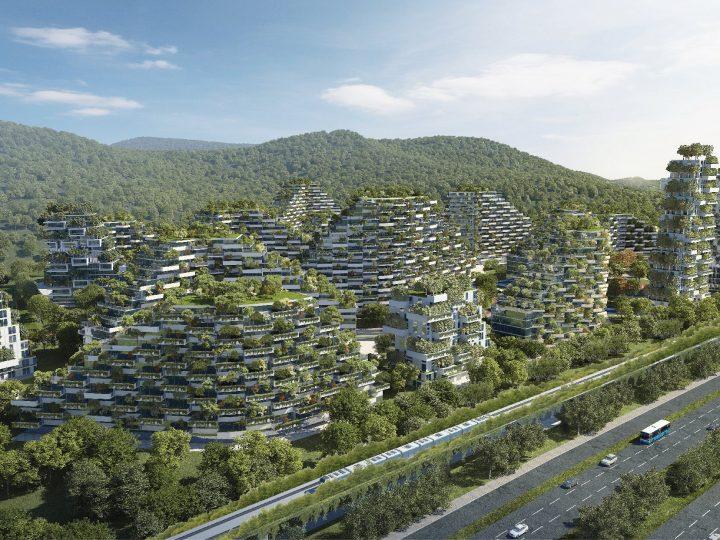 Novi šumski grad s milijun biljaka