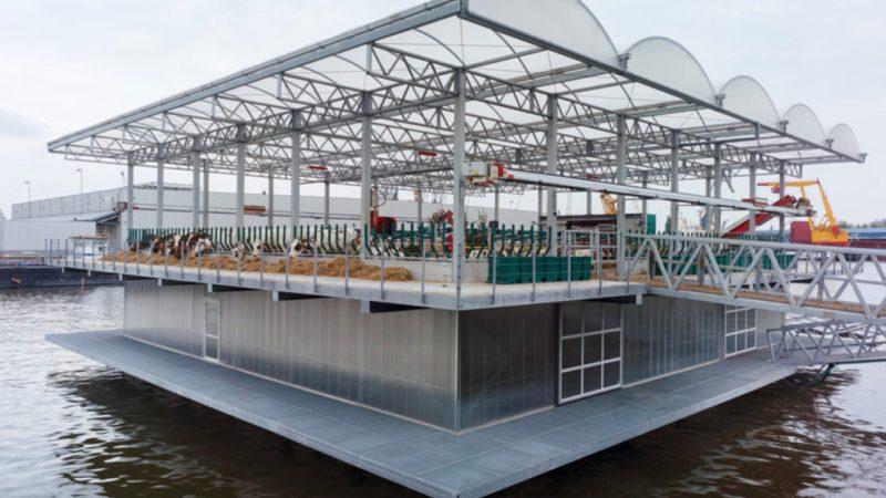 PAMETNA NIZOZEMSKA: U punom je pogonu prva svjetska plutajuća stočna farma